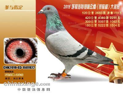 微信图片_202011011614401