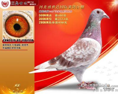 微信图片_202011011614402