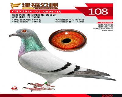 2020年津福决赛108名