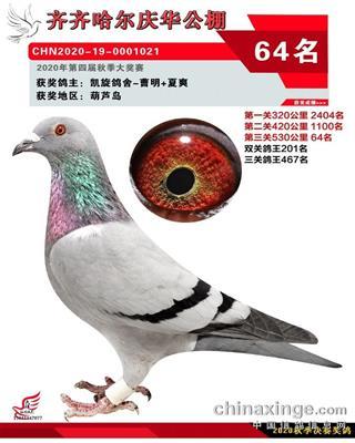 2020年庆华64名
