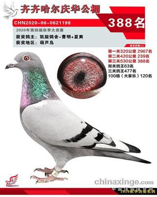 2020年庆华388名