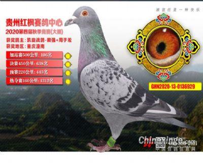 郭氏天马929