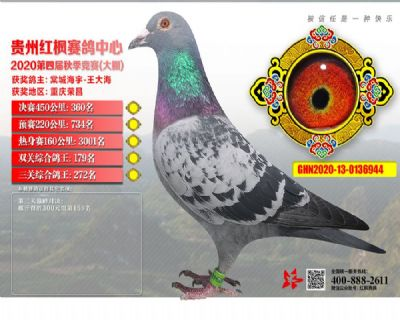 郭氏天马944
