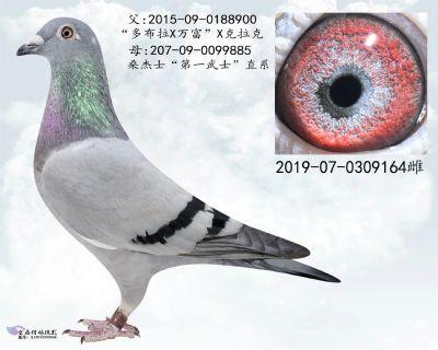 24_副本
