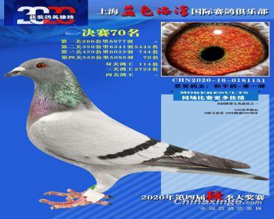 上海蓝色海湾决赛70名