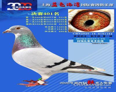 上海蓝色海湾决赛401名