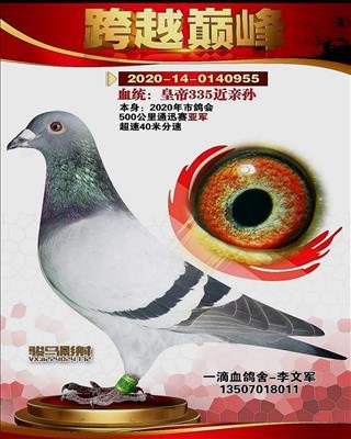 20年秋通迅赛亚军(超速955)