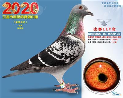 和平117
