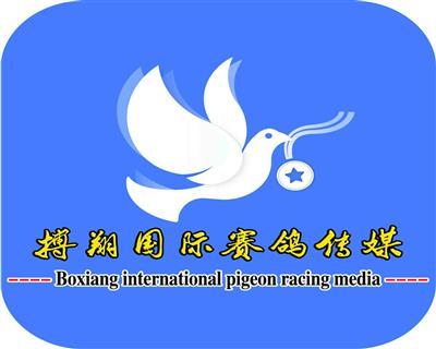 搏翔国际赛鸽传媒LOGO