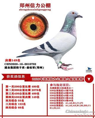 郑州信力公棚决赛149名