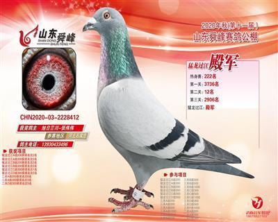 舜峰加站赛殿军预赛125名