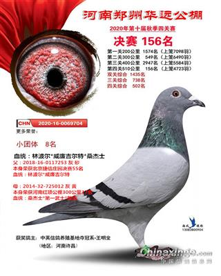 郑州华远公棚决赛156名