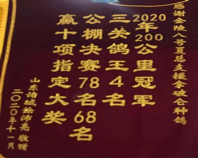 2020.12月山东诸城徐沛亮获冠军