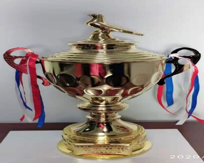 金陵八号2020年11月获江苏金翼赛鸽公棚560公里精英赛冠军