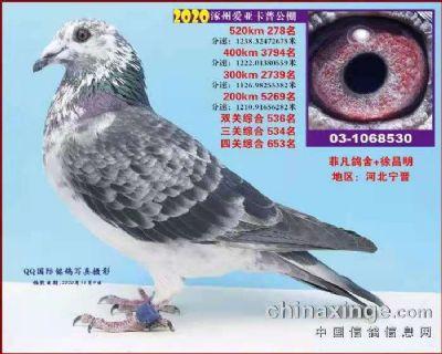 微信图片_20210125120202