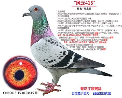 """""""风云415"""""""
