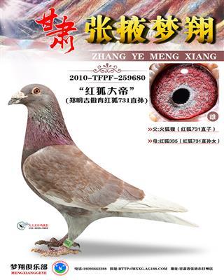 红狐731直孙(红狐大帝)