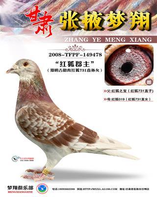 红狐731直孙女(红狐郡主)