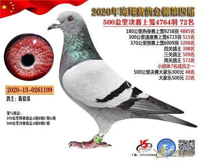 广东海翔公棚决赛72名