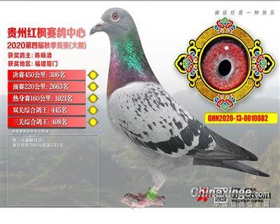 2020年红枫大鹏决赛306名