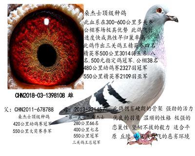 桑杰士种雄108