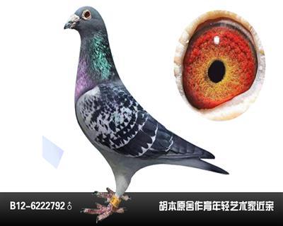 胡本2792