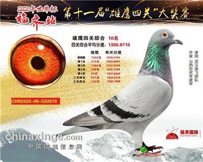 2020年武汉福齐综合10位