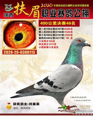 2020秋陕西扶眉公棚决赛48名