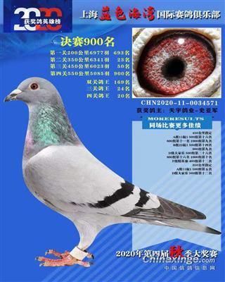 2020年上海蓝色海湾公棚决赛900名