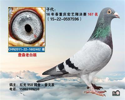 宏艺翔167名