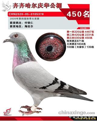 齐齐哈尔庆华决赛450名