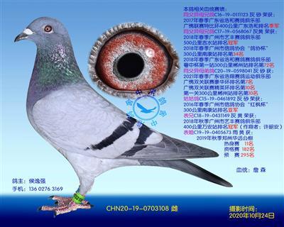 中港詹森�N��-108