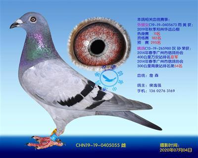 中港詹森�N��-055