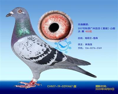 中港詹森�N��-467