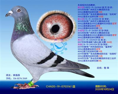 中港詹森�N��-161