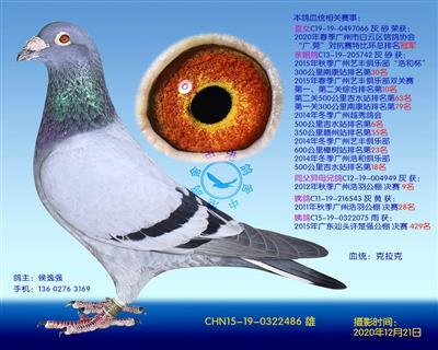 中港克拉克�N��-486