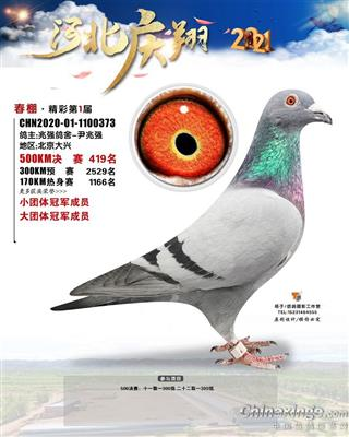庆翔419