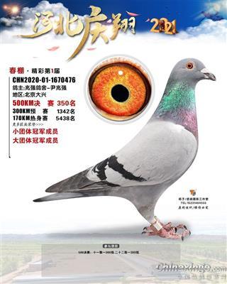庆翔350