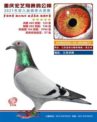 重庆宏艺翔决赛124