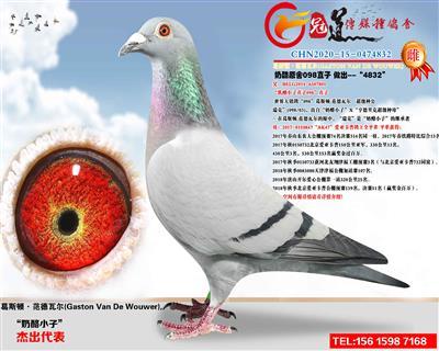 CHN2020-15-0474832