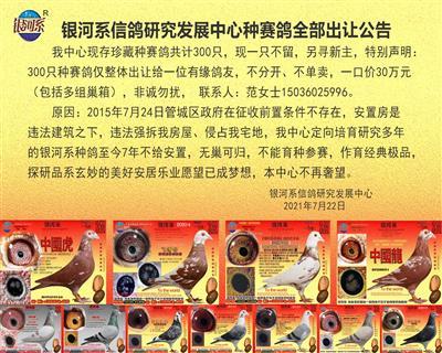银河系信鸽研究发展中心种赛鸽全部出让公告