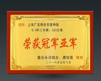 上海广龙中外名鸽舍